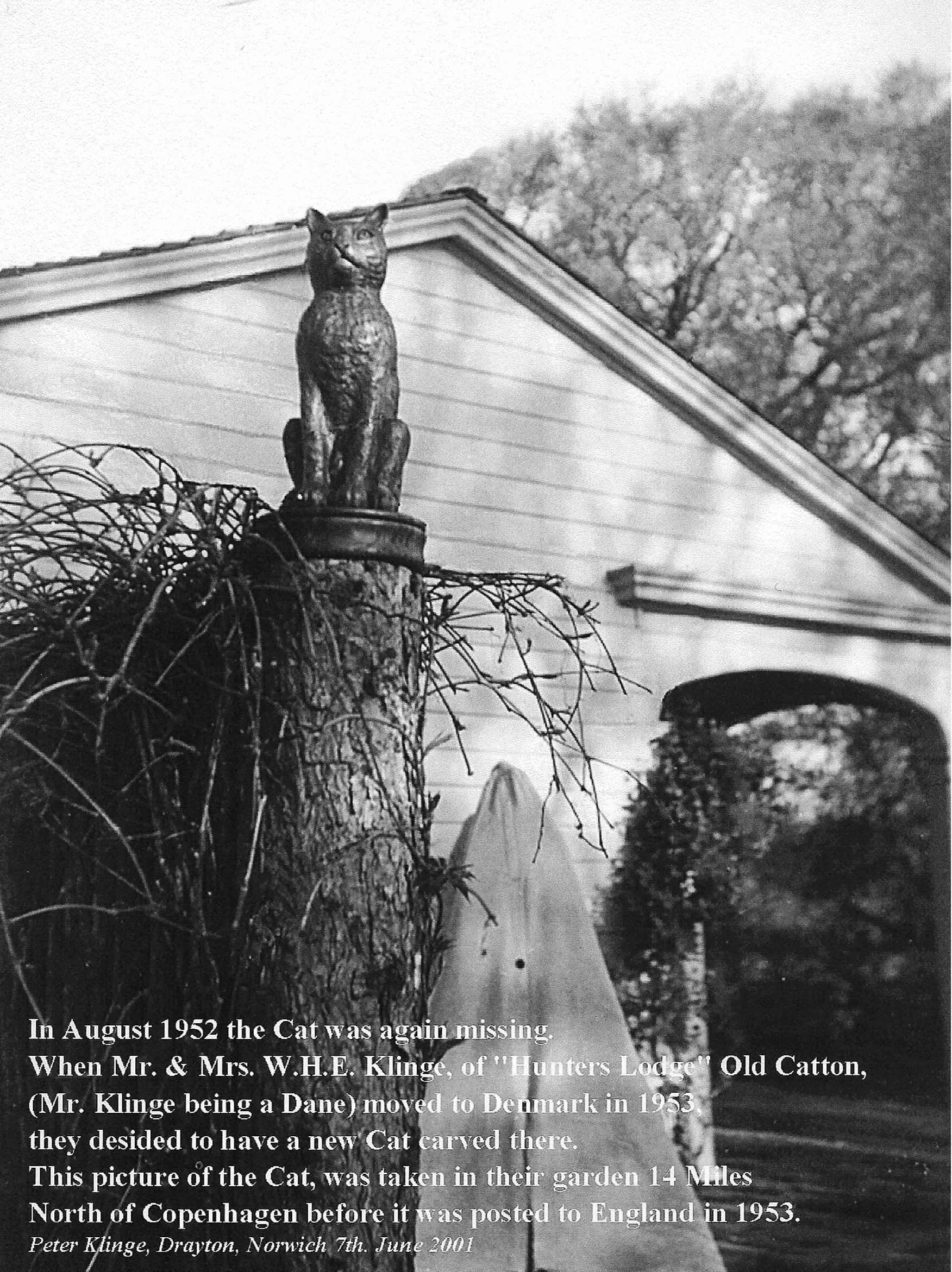 Klinge's cat in his Danish garden
