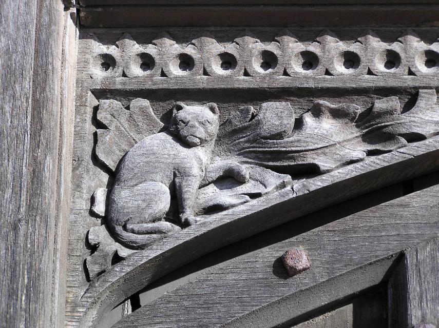 Cat on Manor House door